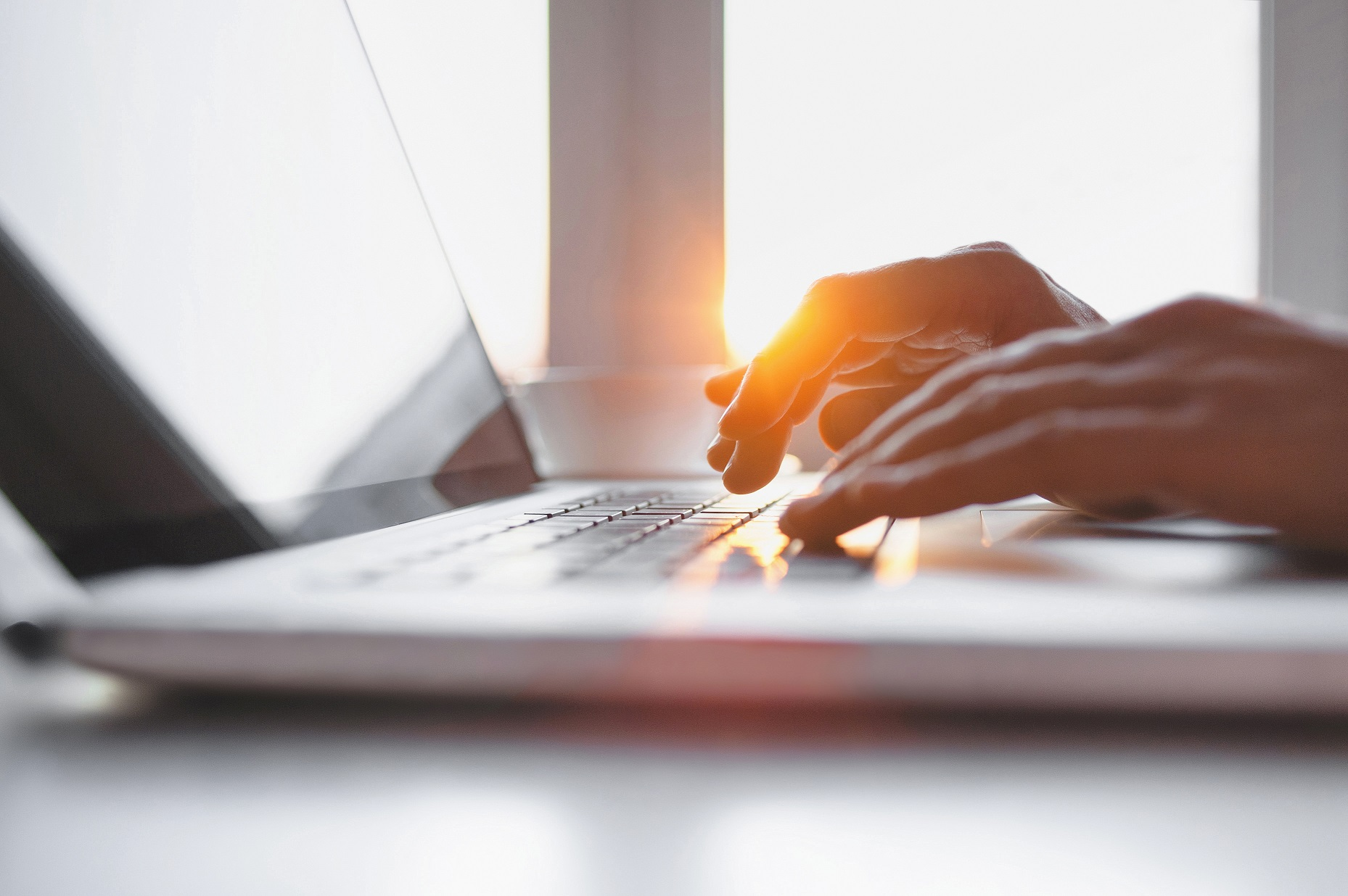 Male hands typing on laptop looking for the best contacts within the American Directory of Group Insurance's easily-searchable database
